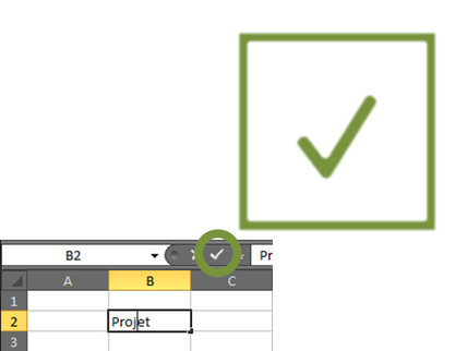 Capture coche validation Microsoft Excel.