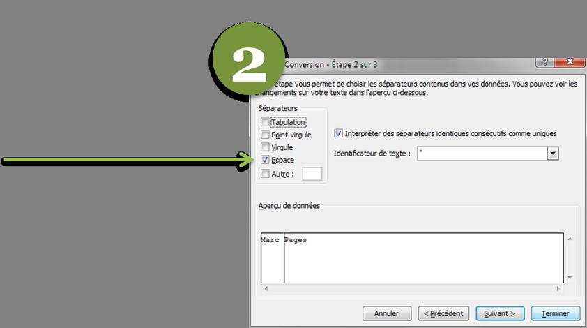 Capture assistant conversion de texte, étape 2 pour le caractère de délimitation.