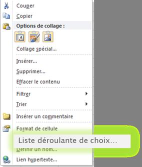 Capture liste déroulante de choix Microsoft Excel.