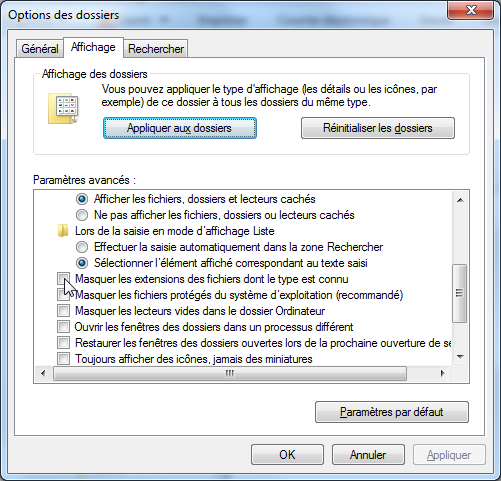 Capture Options de l'explorateur Windows.