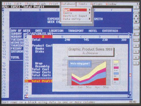 Capture d'écran graphique de Quattro Pro 4 pour DOS.